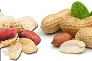 خرید کره بادام زمینی
